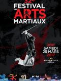 Votre entrée pour le festival des arts martiaux 2017