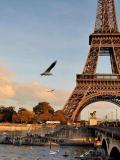 Tour Eiffel @Balade Parisienne