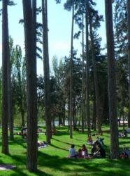 parc-bois-de-boulogne