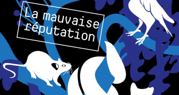 Vacances de la Toussaint 2016 au Muséum de Toulouse