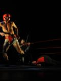 Boxe Boxe Brasil