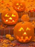 Halloween à Wasquehal