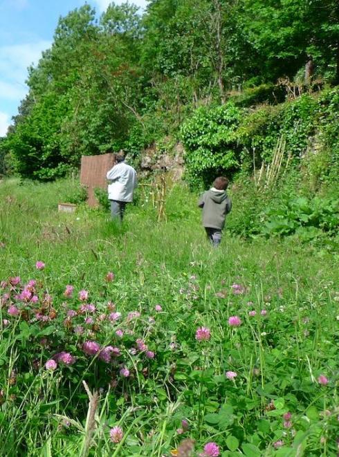La Fête de la Nature 2019 en Loire-Atlantique - Verger du Nid d'Oie