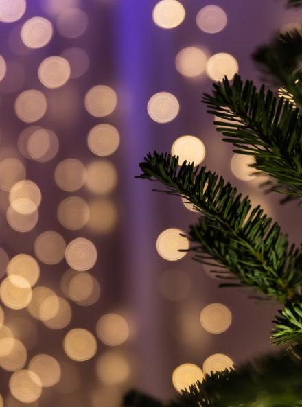 Les Éclats de Noël à Cita-Parc
