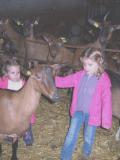 Anniversaire à la Chèvrerie du Bois D'Amon