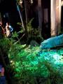 Expo Autour des dinosaures