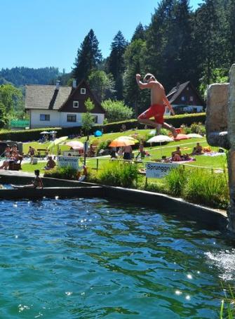 piscine naturelle ottenh fen baignade en famille pr s de strasbourg. Black Bedroom Furniture Sets. Home Design Ideas