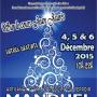 Salon de Noël de Manduel 2015