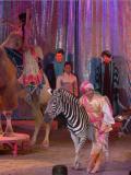 Cirque Medrano - Aladin & Les 1001 nuits