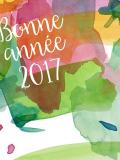 Bonne année 2017 carte de voeux