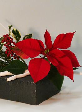 Espace Lyon Japon : Ikebana Noël