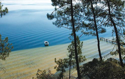 bassin-arcachon-voyage-trucsdenana