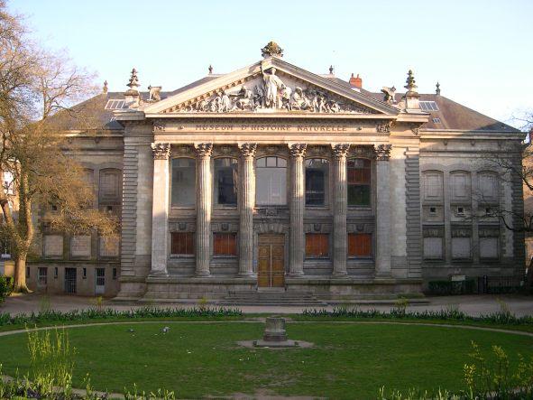 """Résultat de recherche d'images pour """"musée d'histoire naturelle nantes"""""""